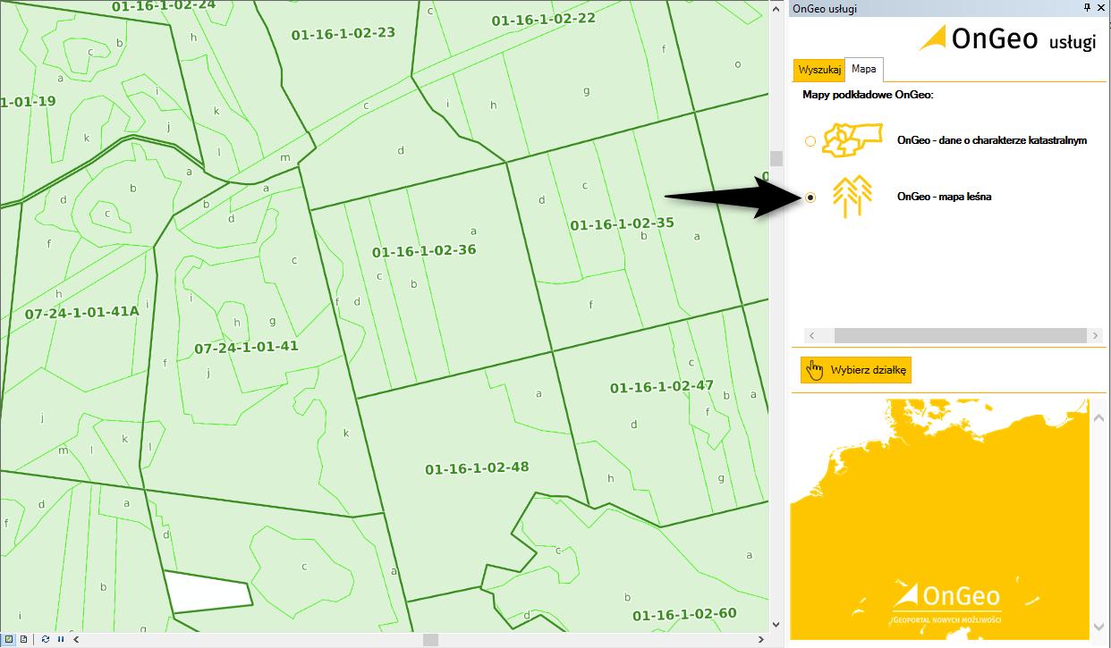 mapy podkładowe, działki i leśna mapa numeryczna dla ArcGIS, zrzut z ekranu